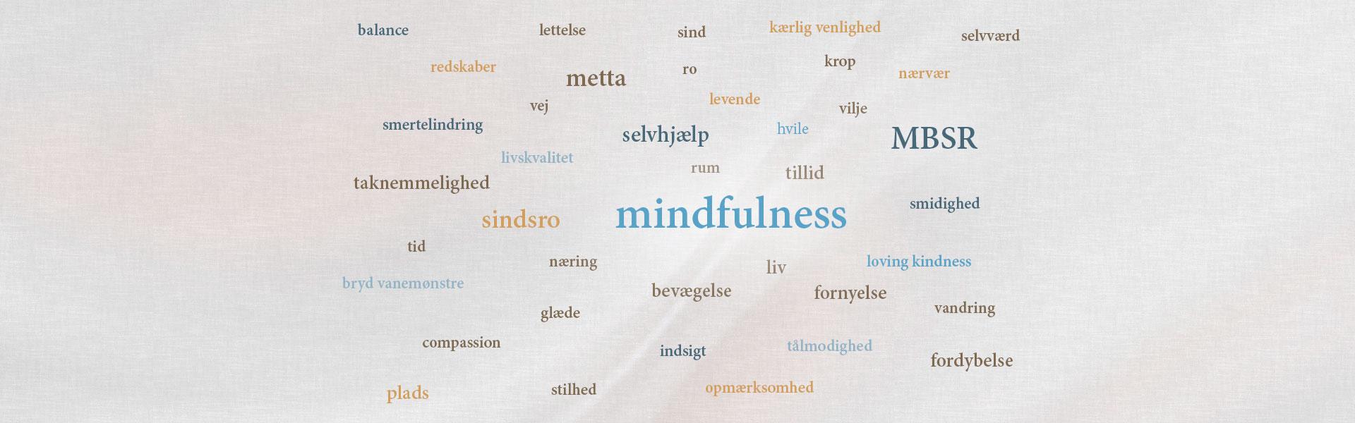 smertelindring, livskvalitet, lettelse, redskaber, selvhjælp, mindfulness, compassion, metta, kærlig venlighed, balance, loving kindness, indsigt, taknemmelighed, sindsro, næring, sind, krop, nærvær, stilhed, tillid, selvværd, opmærksomhed, plads, ro, rum, bevægelse, smidighed, tålmodighed, MBSR, liv, levende, vandring, hvile, vilje, vej, glæde, bryd vanemønstre, fornyelse, fordybelse, tid